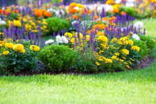 howto make a garden from lawn
