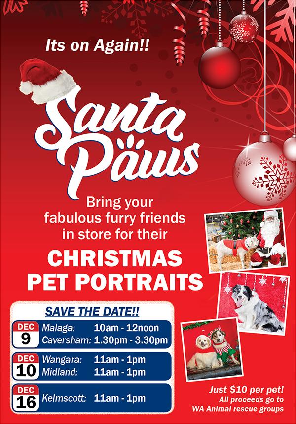 Santa Paws Christmas Portraits 2017