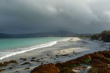 Albany_Beach