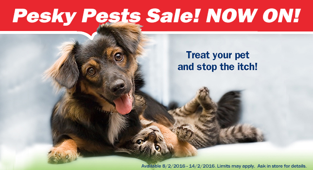 Pesky Pests_Sale_Header