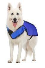 Chilly Vest - dog_web
