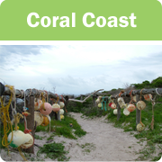 Coral Coast icon