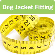 DogJacketFitting