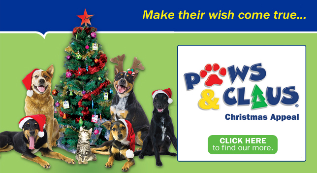 Paws and Claus 2018 Christmas Pet Rescue Appeal