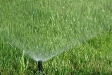 Reticulation_Lawn Sprinkler_web
