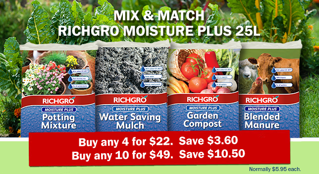 Every Day Deal_Richgro
