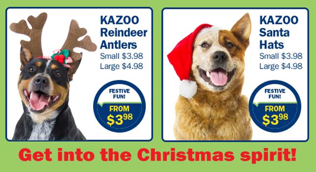 Kazoo Christmas Hats