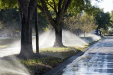 Sprinklers_road_web