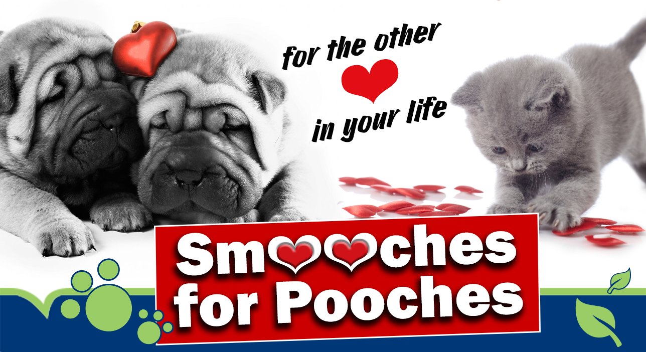 Valentines Smooches for Pooches