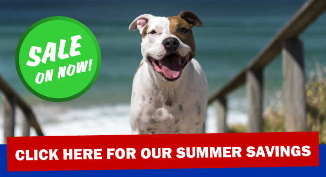 Summer Sale On Now