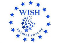 WISH (2)