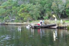 Walpole_Fishing