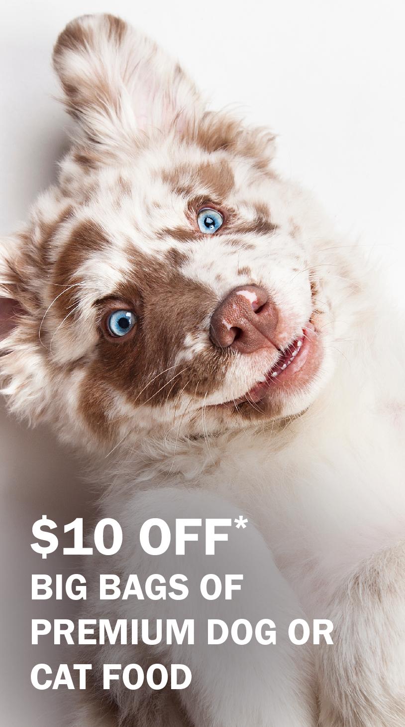 $10 off big bags of premium dog or cat food