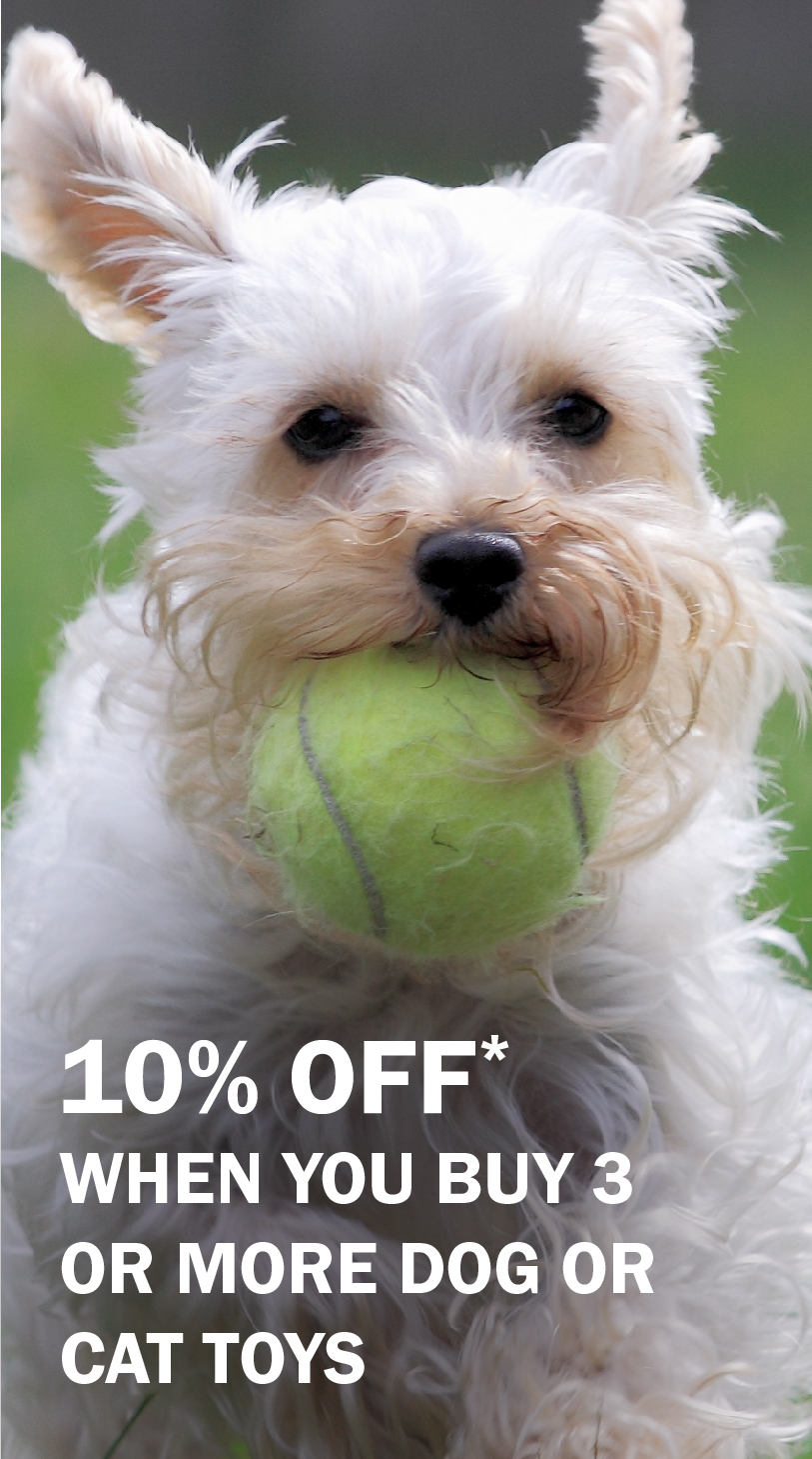 10% off when you buy 3 or more dog or cat toys