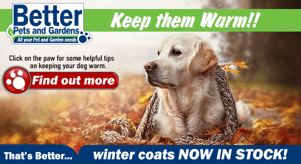 Winter Dog Coats NOW IN STOCK