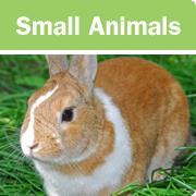 sml-animals